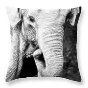 Elephant IIi Throw Pillow