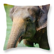 Elephant In Water Throw Pillow