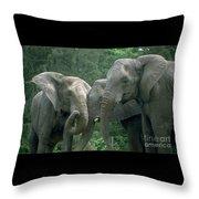 Elephant Ladies Throw Pillow
