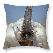 Elephant Portrait Throw Pillow