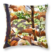 Elephant Rocks Revisited IIb Throw Pillow