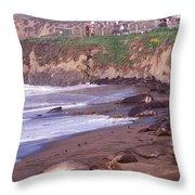 Elephant Seals On The Beach, San Luis Throw Pillow