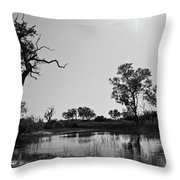 Elephant Skull On Riverbank, Okavango Throw Pillow