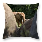 Elephant Spotted Between Rocks Throw Pillow