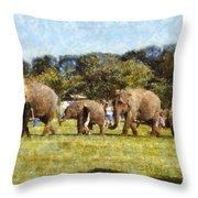 Elephant Train  Throw Pillow
