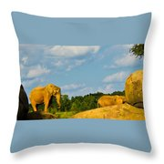 Elephants Among The Rocks. Throw Pillow