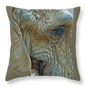 Elephant's Face Throw Pillow