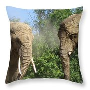 Elephants In The Sand Throw Pillow