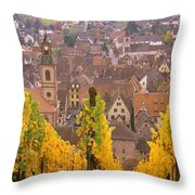 Elevated View Of The Riquewihr Throw Pillow