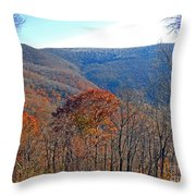 Elevation Throw Pillow