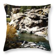 Eleven Mile Canyon - Mountain Stream Throw Pillow