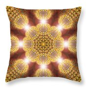Eleven Sacred Steps Of Light K1 Throw Pillow by Derek Gedney