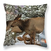Elk And A Beetle Throw Pillow