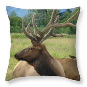 Elk Couple Throw Pillow