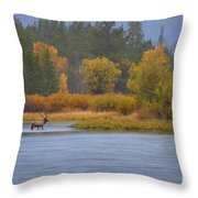 Elk Crossing Throw Pillow