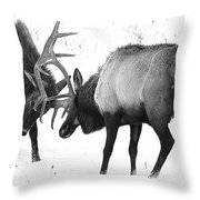 Elk Fighting Black And White Throw Pillow