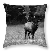 Elk In Black And White Throw Pillow