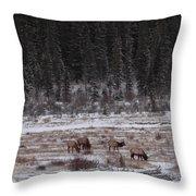 Elk Landscape Throw Pillow
