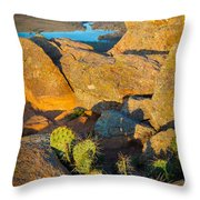 Elk Mountain Sunset Throw Pillow