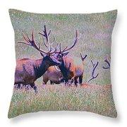 Elk On The Plains 3 Throw Pillow