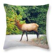 Elk Right Of Way Throw Pillow