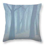Elkhart Fog Throw Pillow