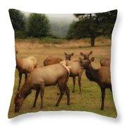 Elks Lodge Throw Pillow