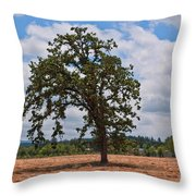 Elm Tree In Hay Field Art Prints Throw Pillow
