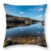 Elsi Reservoir Throw Pillow