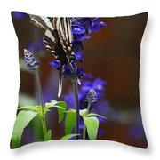 Elusive Zebra Swallowtail Throw Pillow