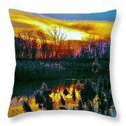 Emagin Sunset Throw Pillow