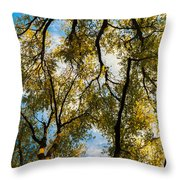 High Links Throw Pillow