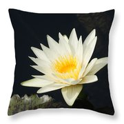 Embracing The Day... Throw Pillow
