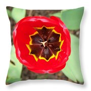 Embracing The Light Part 1 Throw Pillow