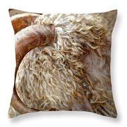 Embracing The Sun Throw Pillow
