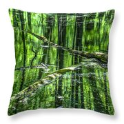 Emerald Reflections Throw Pillow