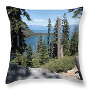 Emerald Bay Vista Throw Pillow