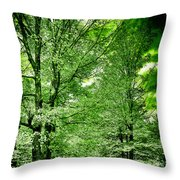 Emerald Clearing Throw Pillow