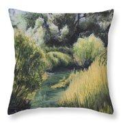 Emerald Creek Throw Pillow