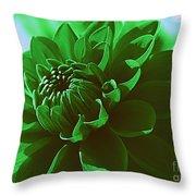 Emerald Green Beauty Throw Pillow