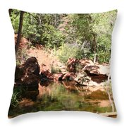 Emerald Pool Reflection Throw Pillow