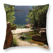 Emerald Pool View Throw Pillow