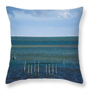 Emerald Seas Throw Pillow