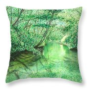 Emerald Stream Throw Pillow