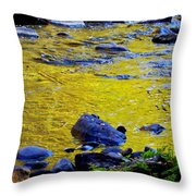 Emerald Water Throw Pillow