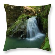 Emerald Waterfall Throw Pillow by Davorin Mance