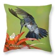 Emerald Woodnymph Throw Pillow