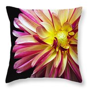 Emerge Throw Pillow