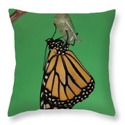 Emergence I Throw Pillow by Clarence Holmes