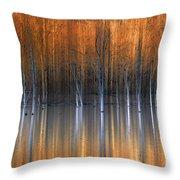Emerging Beauties Reflected Throw Pillow